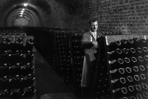 Champagne - The Riddle at Bollinger